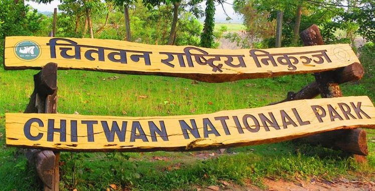 Things to do in Chitwan National Park